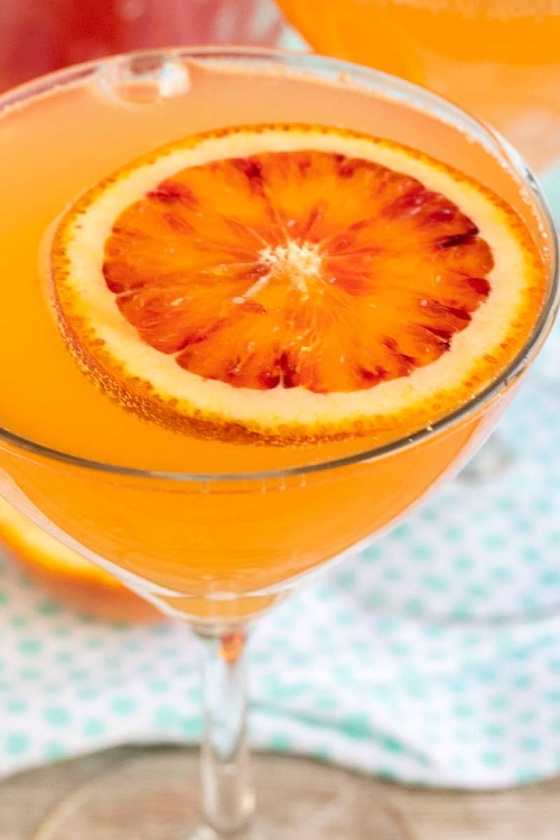 close up of sparkling blood orange cocktail with blood orange slice for garnish